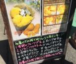犬山市 芳川屋