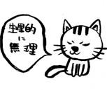 neko_kyohi